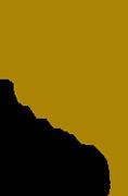 شعار شركة رزم القابضة